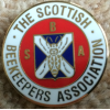 lapel_badge
